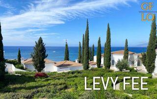 Что такое levy fee на Кипре?